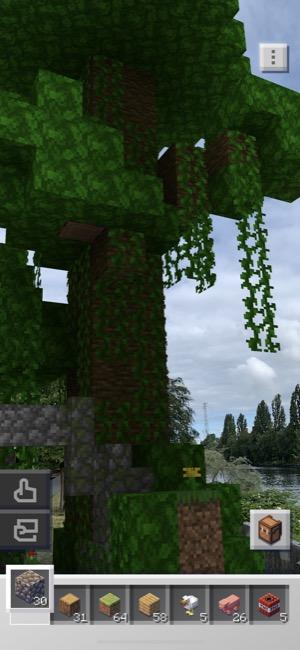 Minecraft_03