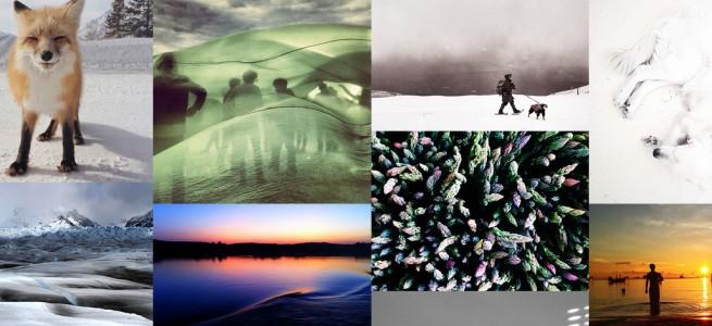 iPhoneで撮影された超絶クオリティの写真が一堂に集うコンテスト「IPPAWARDS」