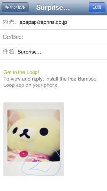 bambooloop5