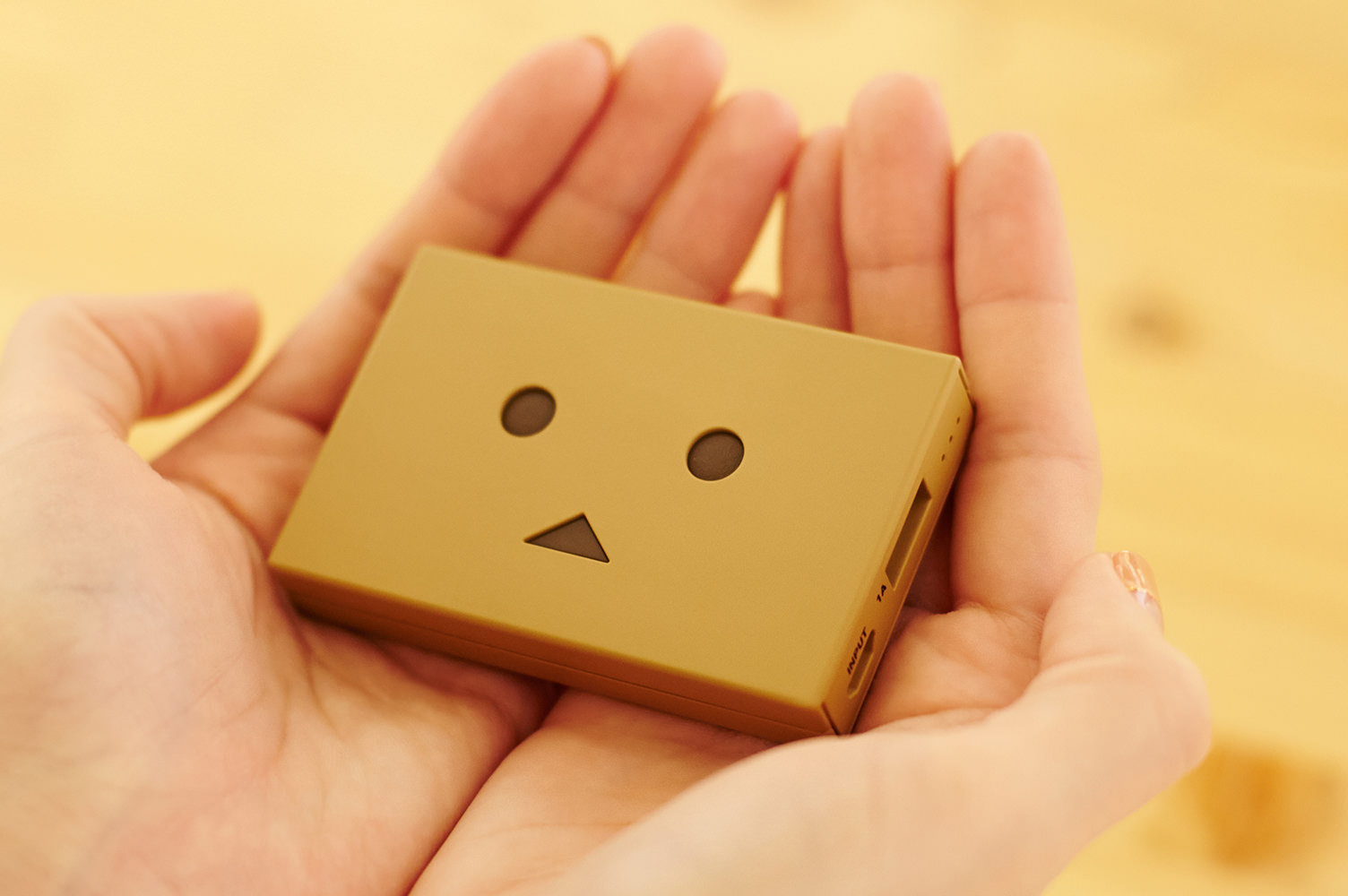 cheero danboard battery block plate (7)