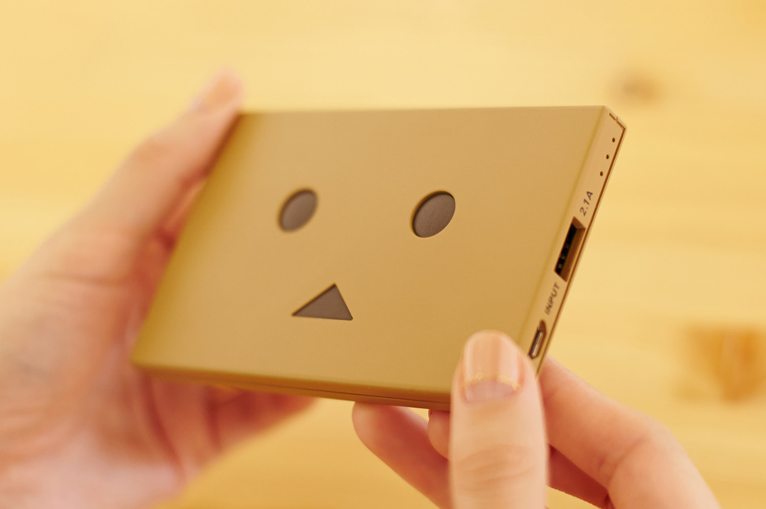 cheero danboard battery block plate (8)