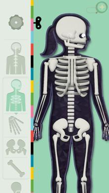 humanbody4