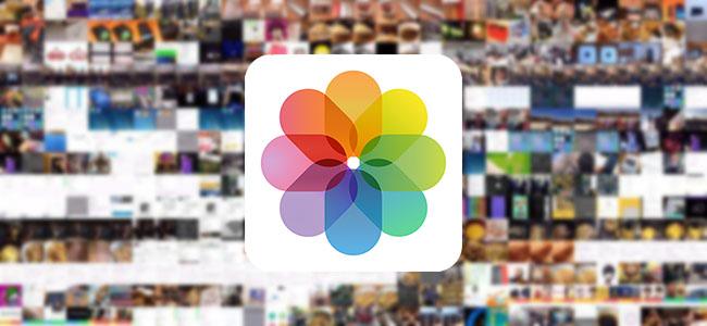 大量のカメラロールから目当ての写真を素早く見つける方法