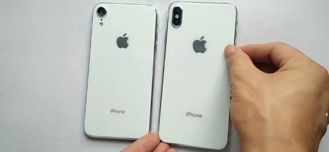 新iPhoneシリーズから6.5インチと6.1インチモデルのダミーユニットのハンズオン動画が投稿される