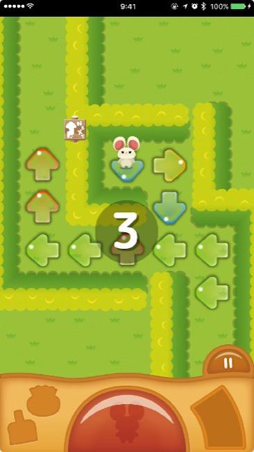 michibikipuzzle01