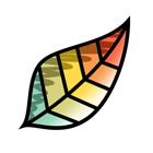 塗り絵アプリ「Pigment」ではじめる、楽しい「大人の塗り絵」!
