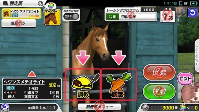 starhorsepocket11