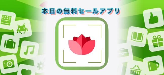 240円 → 無料!植物を写真に取ると情報がわかるアプリ「PlantDetect」ほか